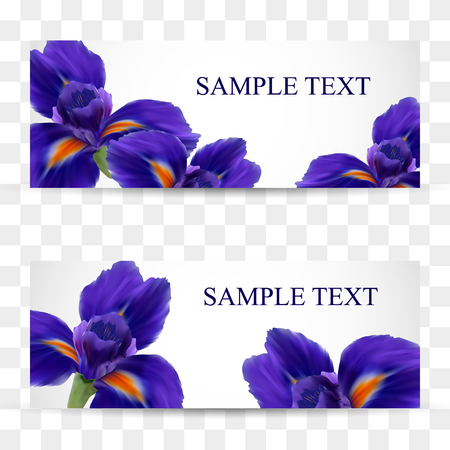 A set of cards or postcards with realistic iris flowers Vettoriali