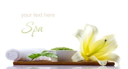 spa cosmetica en decoratie geà ¯ soleerd op wit Stockfoto