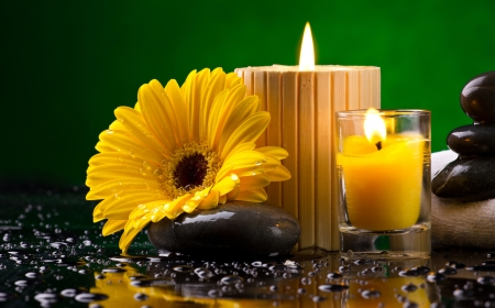 Spa still life with yellow flower, candles pebble and water drop on green background