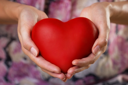 red heart in womans palms, blured lilac background Stock Photo