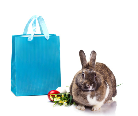 brown furry rabbit, yellow and green flowers, red and white eggs and blue bag isolated on white   photo