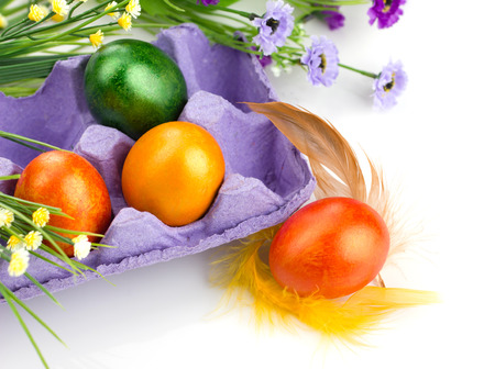easter colorful eggs in violet tray,  bunch of flowers and feather on white background photo