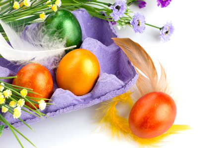 easter painting eggs in violet tray,   flowers and colorful feather on white background photo