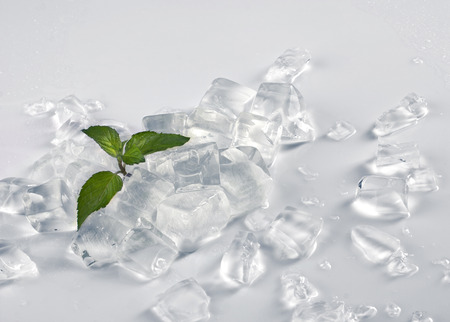 life design - ice cubes and little green plant on light grey background photo