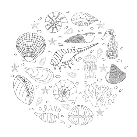 貝殻やヒトデの素晴らしいベクトルを設定します。セットは手で描いた。はがき、挨拶、繊維上にプリントやその他の創造的な製品を使用します。