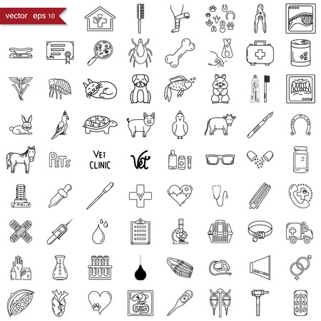 Vet icons, big set, flat style vector Banque d'images