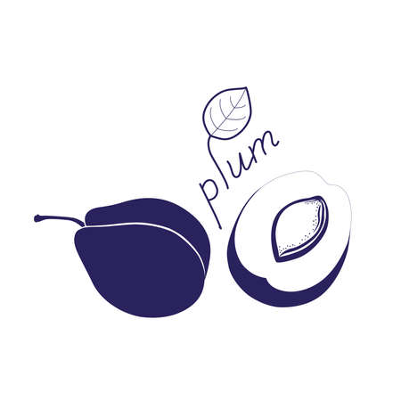 Plum silhouette illustration. Outline drawing of plum fruit. 向量圖像