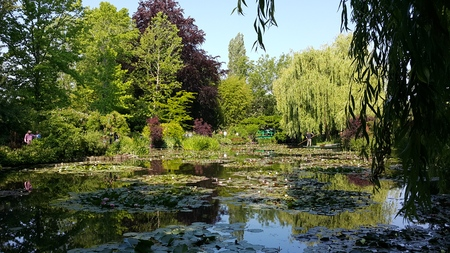 monet: Monet Waterlily Pond Giverny France