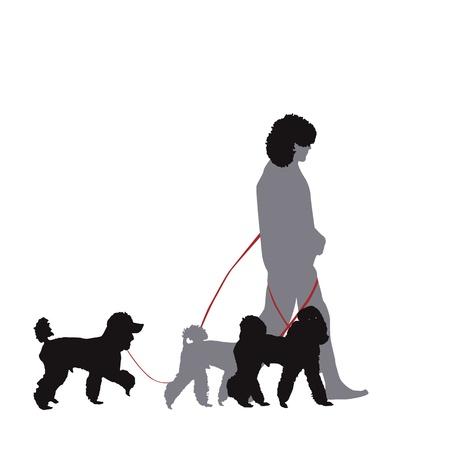 professionele hond wandelen Stock Illustratie