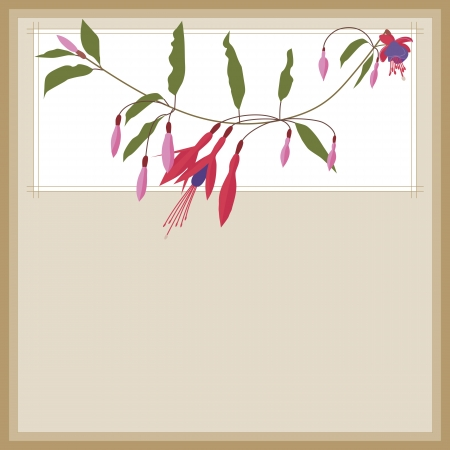 fuchsia flower: Floral background with copy-space