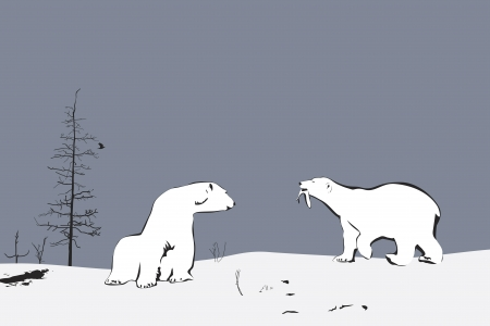 arctic landscape: Two Polar Bears, illustration Illustration