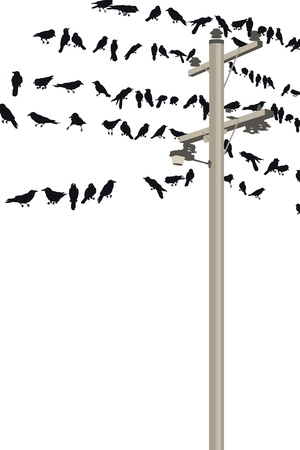 the crows: Illustration of wireless technology