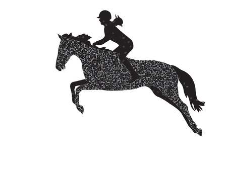 cavallo che salta: Salto ostacoli