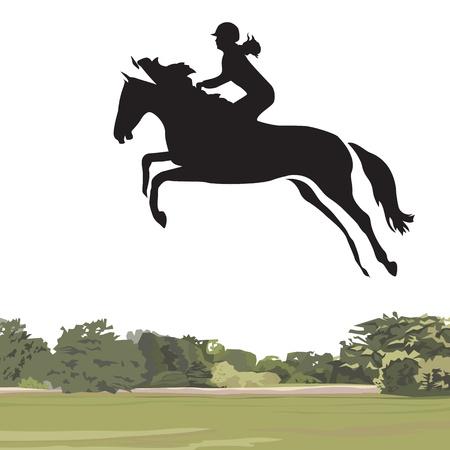 caballo saltando: Caballo de salto Vectores
