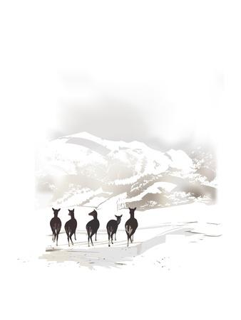 montañas nevadas: invierno paisaje de montaña