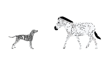 Genetically Modified Animals Vector