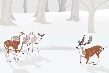fallow deer: Snowy Forest Landscape Illustration