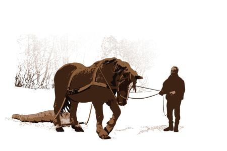 Paard houtkap