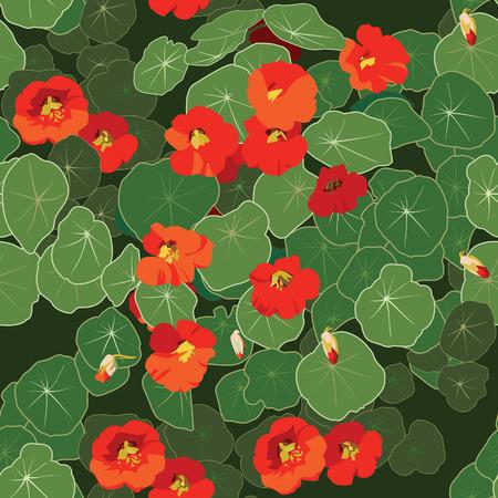 nasturtium: Nasturtium seamless pattern