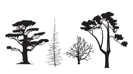 tree silhouettes: Tree silhouettes, set of 4