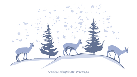 wintry: Antelope Klipspringer-Oreotragus Silhouettes Illustration