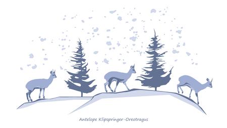 Antelope Klipspringer-Oreotragus Silhouettes Illustration