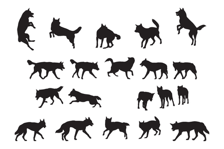 sprightly: Australian Dingo Silhouettes Collection Illustration