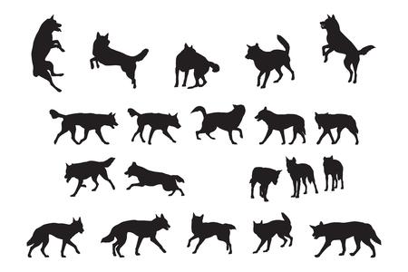 Australian Dingo Silhouettes Collection Illustration
