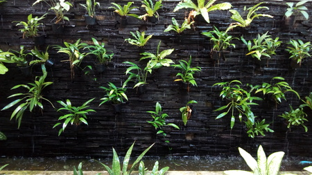 Vertical Garden On Rock Brick Wall And Water Fall Falling Through The Wall  And The Plants