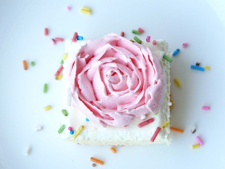 pound cake: Pink rose vanilla cream cake. The vanilla cake decorated with cream of pink rose and sugar color. Close up front view in a white plate isolated on background.