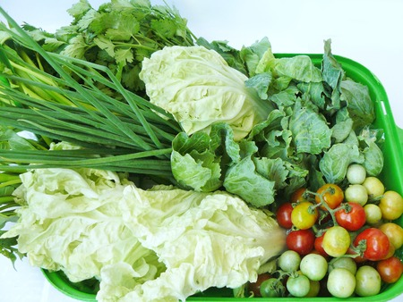 Vegetable set for healthy diet food. The spring onion, coriander, kale, tomato, white radish and morning glory in green basket. Isolated on white background.