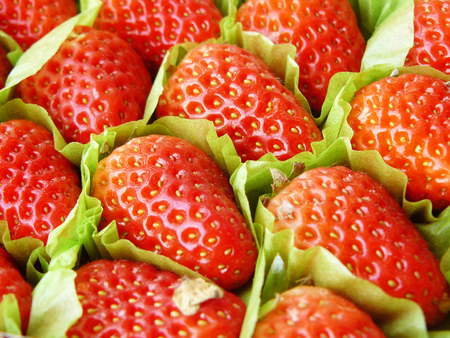 Close up the group of very fresh harvested strawberries in the box seem like pattern of strawberries for background and texture. Imagens