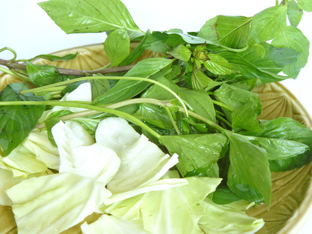 Vegetable set for healthy diet food. The green Sweet Basil or Thai Basil and white cabbages. Isolate on white background.