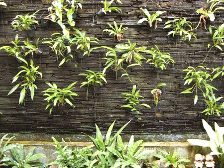 Stock Photo   Vertical Garden On Rock Brick Wall And Water Fall Falling  Through The Brick Of Wall And Plants In Flower Pots. Many Small Flower Pots  On ...