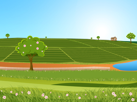 Illustration of tea plantation and beautiful blue sky in a bright summer day landscape. Stock Photo