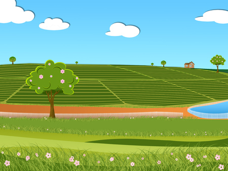 Illustration of tea plantation and beautiful beautiful blue sky with white fluffy clouds in a bright summer day landscape.