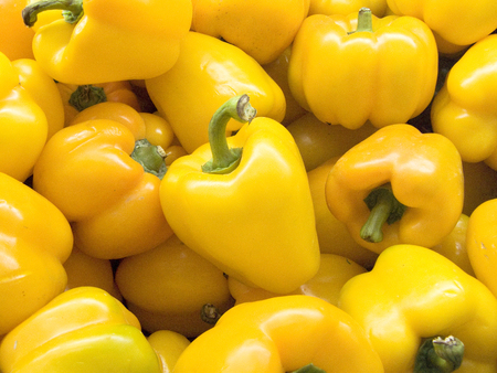 The fresh group of yellow bell pepper or sweet pepper, Jons Head, pepper and capsicum (capsicum annuum l.) Cultivars of the plant produce fruits in different colors.