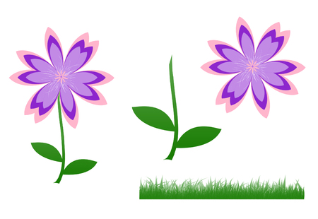Illustration of cute flower, pink-purple-violet flower and green leaves standing and green grass isolated on white background.