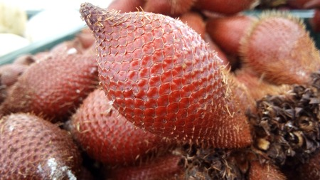 Fresh fruits for healthy diet food. A photo of group of red salak or sala (  or Salacca edulis Reinw ) is very fresh sweet fruits, close up for texture and background.