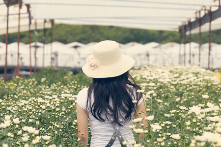 Asian girls aged 25-30 years, long black hair. Wearing a white hat standing in the middle of a field of white chrysanthemum. vintage tone.