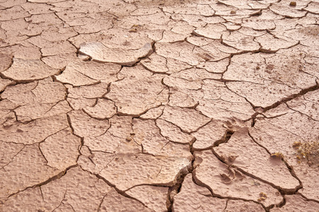 Details of the ground The cracks in the soil. Due to the lack of moisture in the soil, the characteristics of the dehydrated clay are separated. Drought On the conservation of soil and water. Stok Fotoğraf