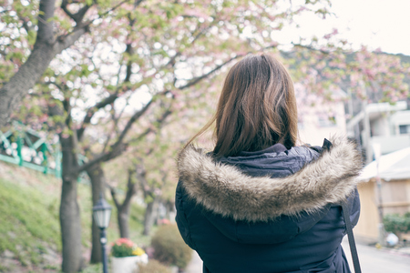 Asian women, white skin aged 25-30 years holding a smart phone, photographed cherry blossoms (sakura flower) beside the river. Feels fresh and beautiful. Spread the cold air. In Japan