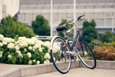 Bike parked in the park, among the fields of hydrangea. The Bam is full of gardens. Beautiful to relax. Fitness concept Make a vintage tint