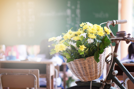 Old bicycle is decorated with chrysanthemum basket in front of the bike. The background is classroom with a blackboard and a student desk. Educational Ideas Stock Photo