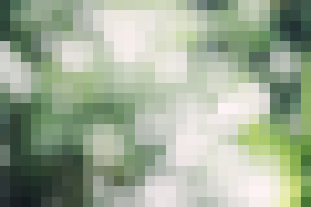 Digital art Mosaic White and green squares graphic abstract background ideas for your design banners , book, abstract shape Website work, stripes, tiles, background texture wall with copy spaces. Stock Photo
