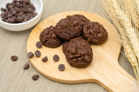 Chocolate flavored cookies Mixed with chocolate chips, placed on a beautiful fragrant fragrant wood, beautifully placed Cooking concept Dessert food placement