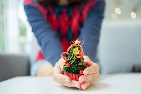 Close up shot of female hands holding a small Christmas tree Celebrate Christmas on December 25 every year. enjoying Christmas holiday at home