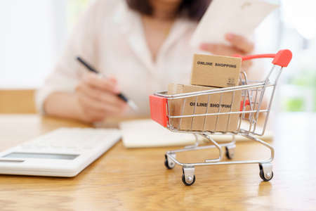 Online shopping with a shopping cart and shopping bags delivery service using as background shopping concept and delivery service concept with copy space  for your text or  design. Banque d'images - 151879224