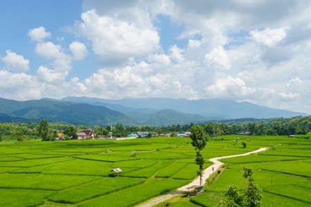 Rice fields in Nan Province, Thailand are natural tourism destinations and learn about the culture of the community. Stock fotó