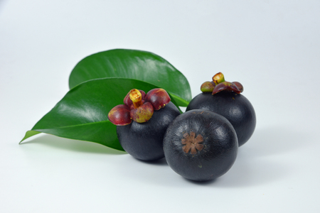 Asian fruit mangosteen on white background.